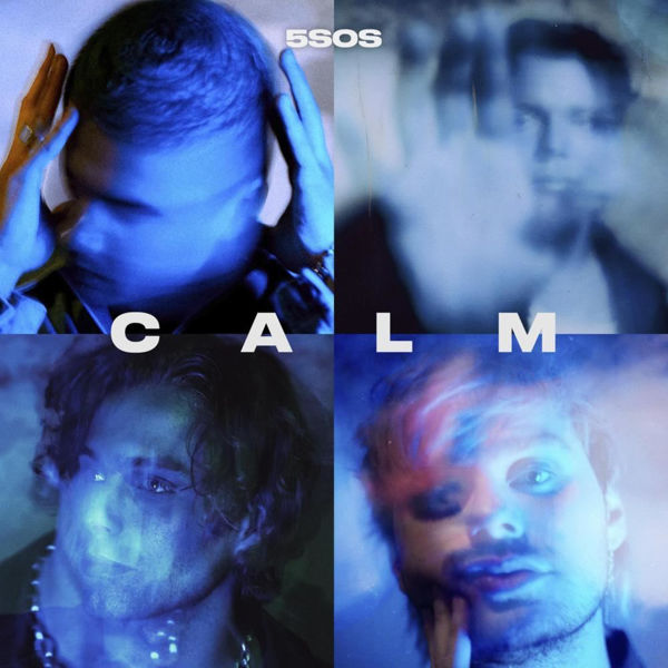 Picture of 5 Seconds Of Summer 2020 - CALM CD