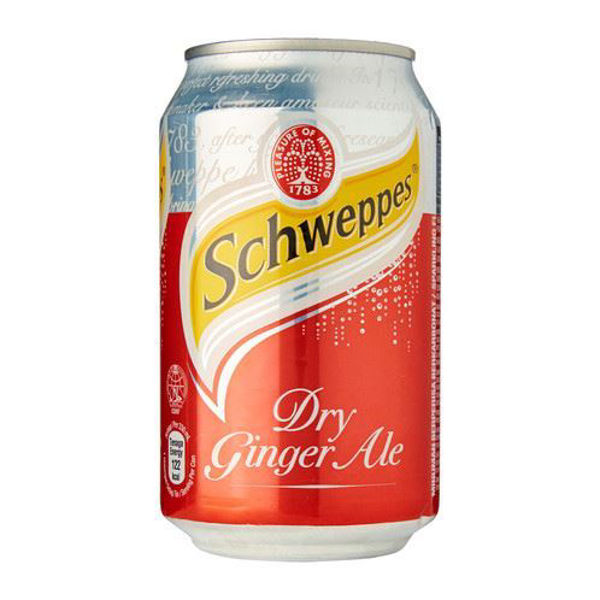 Picture of Soft Drink - Ginger Ale Can